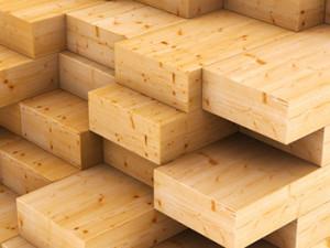 Holz ist ein genialer Werkstoff